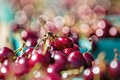 Картинка макро, блики, еда, вишни, боке, черешни