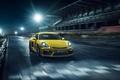 Картинка 2015, порше, Porsche, Cayman, кайман, GT4, 981C