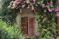 Картинка цветы, Сирмионе, flowers, Sirmione, Италия, окно, flowering, Italia, Italy