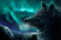 Картинка северное сияние, ночь, горы, Волк