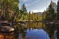 Картинка лес, природа, озеро, камни