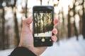Картинка снег, солнечный свет, зима, рука, деревья, боке, фотография, iPhone, пейзаж, лес