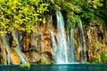 Картинка водопад, скала, озеро, кусты, ветки