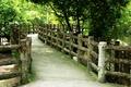Картинка green, nature, bridge, wood, tree