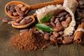 Картинка бадьян, корица, лопатки, какао бобы, листья
