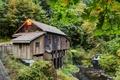 Картинка лес, лето, ручей, мельница