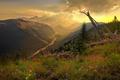 Картинка Горы, река, трава, облака