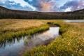 Картинка поле, природа, река