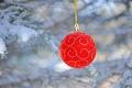 Картинка снег, праздник, ель, шарик, украшение