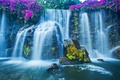 Картинка водопад, мох, цветы, камни