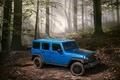 Картинка джип, 2015, Wrangler, Jeep, вранглер, лес