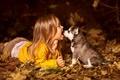 Картинка собака, девочка, щенок, ребенок, хаски, друзья