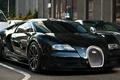 Картинка Bugatti Veyron Super Sport, чёрный, обои авто, дорога
