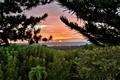 Картинка Кабо Рохо, Пуэрто-Рико, солнце, деревья, горизонт, лес, закат