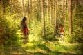Картинка стиль, тигр, девушка, текстура, лес