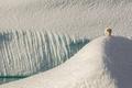 Картинка Канада, льдины, Canada, белый медведь, айсберги, Eclipse Sound, Нунавут, Nunavut