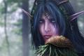 Картинка фантастика, fantasy, эльфийка, warcraft, night elf