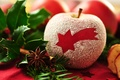 Картинка макро, dessert, десерт, пудра, красное, яблоко, Apple, звезда