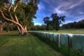 Картинка Деревья, луг, ограда