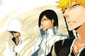 Картинка anime, Grimmjow Jaegerjaquez, Shinigami, bleach, Ichigo Kurosaki, art