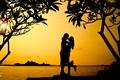 Картинка широкоэкранные, парень, HD wallpapers, обои, влюбленные, листья, дерево, море, girl, мужчина, девушка, полноэкранные, love, background, ...