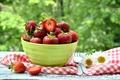 Картинка ягоды, ромашки, миска, клубника