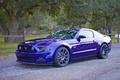 Картинка Incurve, IC-S10, Mustang, Ford