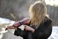 Картинка девушка, скрипка, волосы