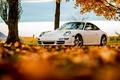 Картинка foliage, белый, tree, white, листья, autumn, порше, Porsche, 911, небо, sky, осень