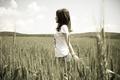 Картинка настроения, природа, черно-белая, брюнетка, пшеница, девушка, рожь, девушки
