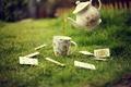 Картинка зелень, карты, трава, газон, чай, чайник, чашка