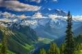 Картинка небо, долина, лес, горы