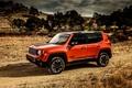 Картинка Jeep, 2015, Trailhawk, Renegade