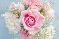 Картинка цветы, flowers, букет, светлый, розовый, цвет, роза, pink, rose