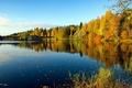 Картинка осень, лес, небо, мост, река