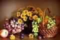 Картинка цветы, хризантемы, яблоко, натюрморт, фрукты, груша, слива, виноград