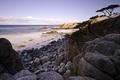 Картинка камни, USА, деревья, скалы, пляж, Pacific Grove Acres, Pacific Grove