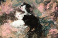 Картинка картина, обои от lolita777, спят, котята, пушистые, черно-белые, мазки, акварель