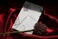 Картинка письмо, цветок, фон