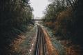 Картинка деревья, мост, путь, осень, железная дорога