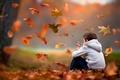 Картинка Мальчик, листья, осень
