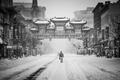 Картинка America, street, snow, blizzard, b/w, guy, United States, man, black and white, male, Washington, cold, ...