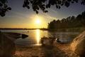 Картинка утро, лодка, пляж, озеро, лес, лето, солнце, глыбы, камни
