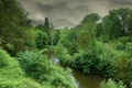 Картинка шторм, river, forest, природа, storm, Nature, зелень, green, река, лес