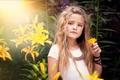 Картинка портрет, child photography, жёлтые цветы, девочка
