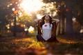 Картинка листопад, Mid Autumn Morning, девушка, осень