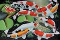 Картинка вода, кои, арт, koi fish, лотос, золотые рыбки, рыбки