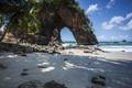 Картинка скала, пляж, камни, пальма