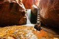 Картинка canyons, utah, waterfall, nature