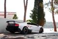 Картинка белый, тюнинг, Lamborghini, SuperVeloce, LP670–4, Murciélago